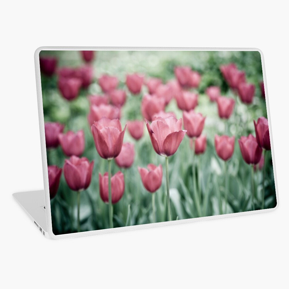 Pink Tulip Field Laptop Skin