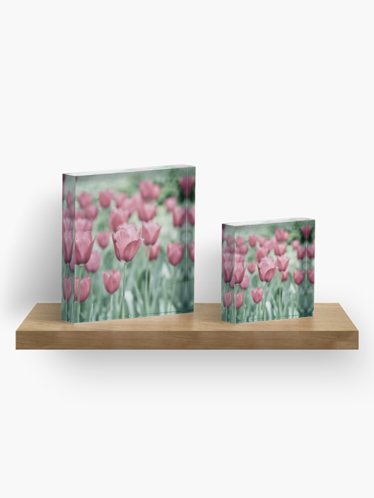 Alternate view of Pink Tulip Field Acrylic Block