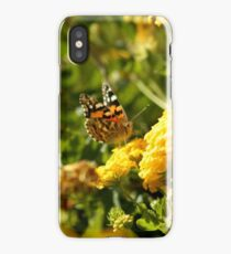 Butterfly on Yellow Lantana 2 iPhone Case