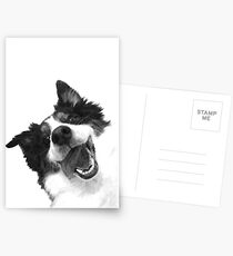 Black and White Happy Dog Postcards
