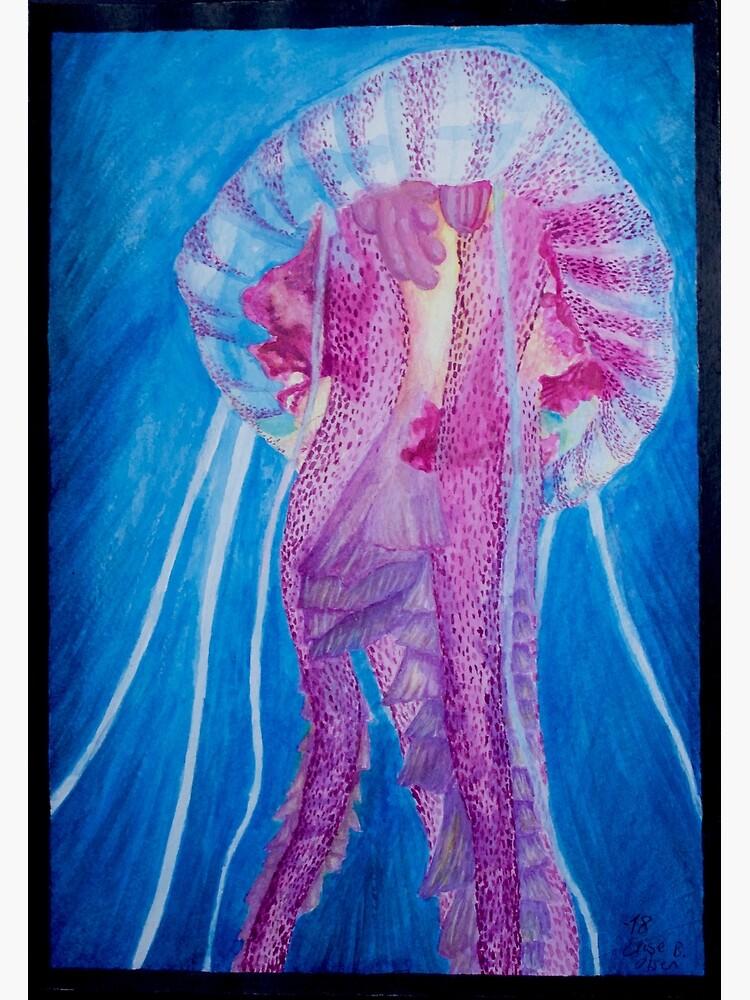 Pelagia jellyfish by ElisesArtShop