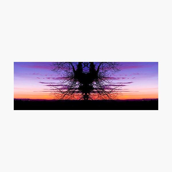 Dear Tree Spirits Photographic Print