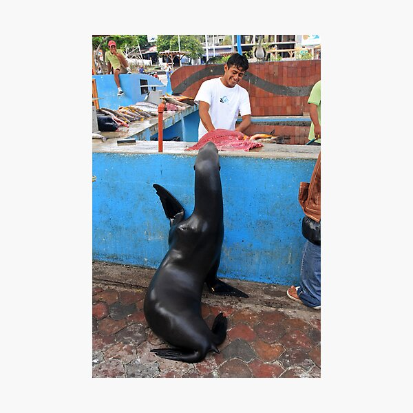 Fish Market High Five Photographic Print