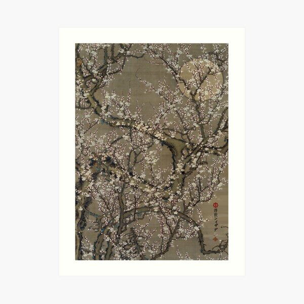 M-012 Cherry Blossom in Moonlight Art Print