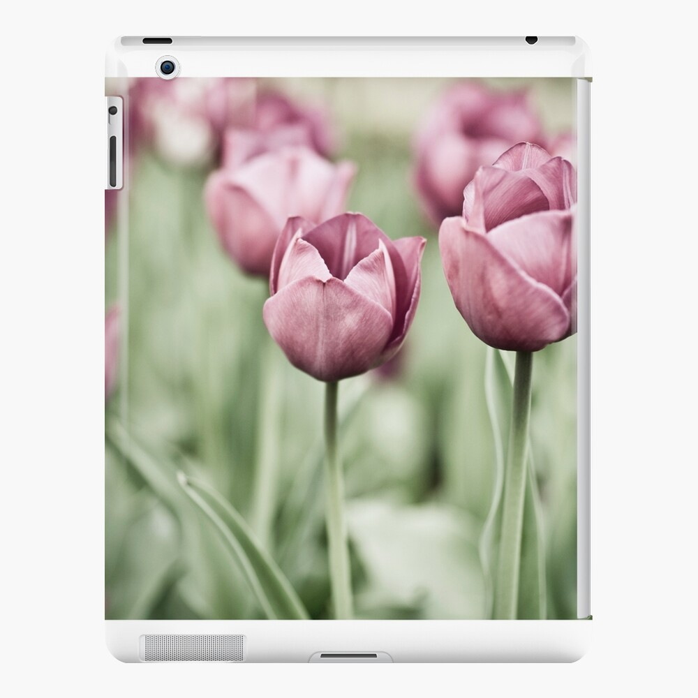 Tulip Garden iPad Case & Skin