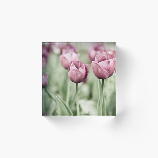 Tulip Garden Acrylic Block