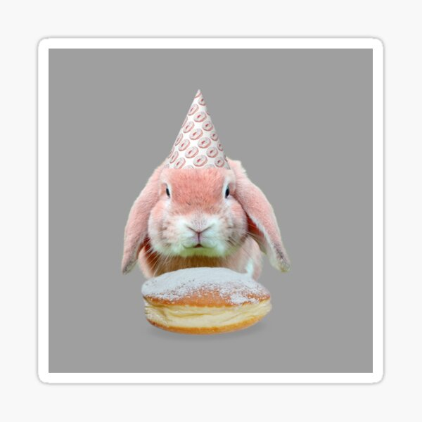 Rabbit Donut Party by Alice Monber Sticker
