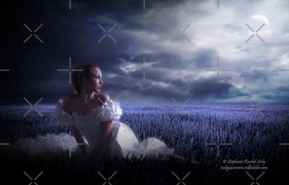 Moonlight Solace by Stephanie Rachel Seely