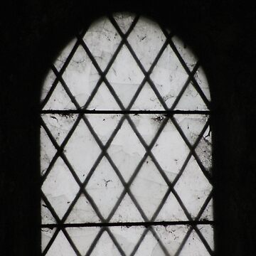 Window by chihuahuashower