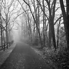 Foggy Path along the Ironton Trail by EthanQuin