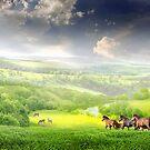 Green Planet by Igor Zenin