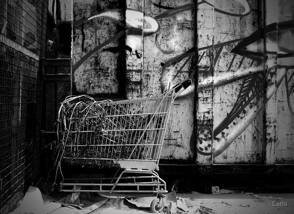 Junk by Cathi Norman