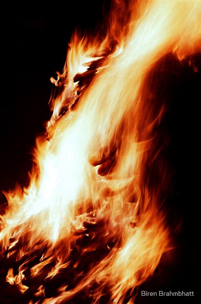 Holika Dahan - The Sacred Fire by Biren Brahmbhatt