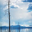 Yellowstone Lake II by EthanQuin