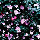 Emerald Green And Rose Blush Pink Floral by creativevibe