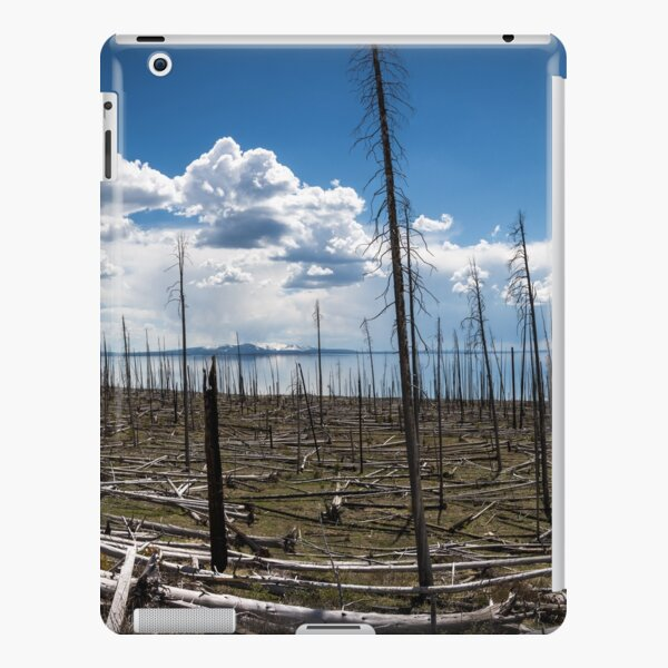 Yellowstone Lake III iPad Snap Case