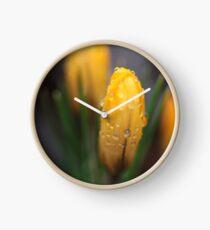 Spring flowers. 27th march 2018. No.2. © Dr.Andrzej Goszcz.   Clock