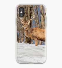 King of the Hill iPhone Case