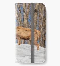 King of the Hill iPhone Wallet/Case/Skin