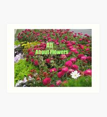 All About Flowers Art Print