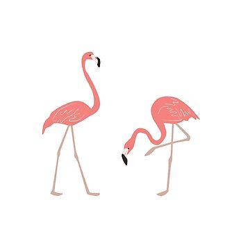 Flamingos Budgie T Shirt & Finches TShirts. Awesome Flamingos Birds T-Shirt Wading Bird Tee by IATV
