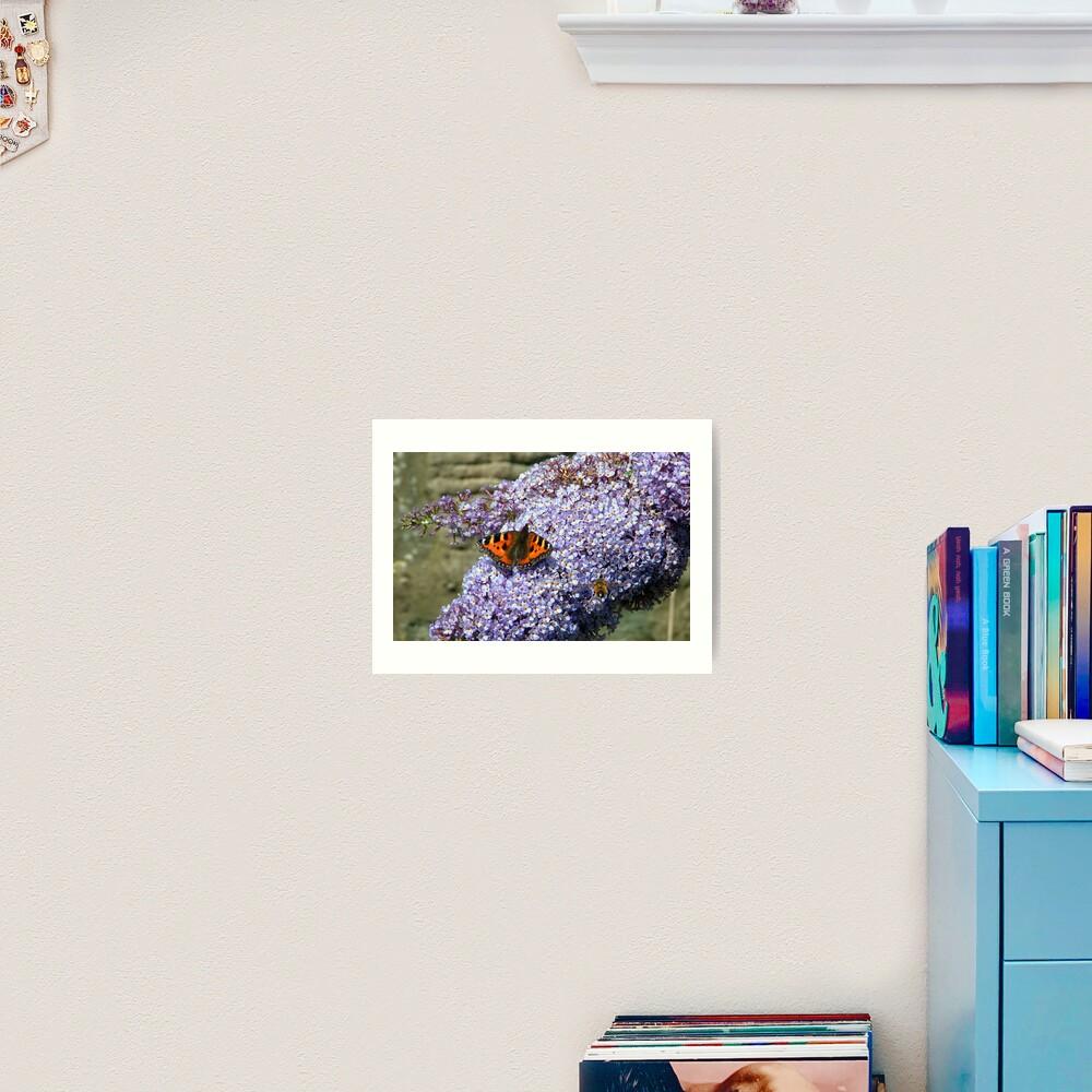 Butterfly2# Art Print
