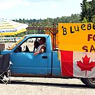 Canadiana of a sort. by John Beamish