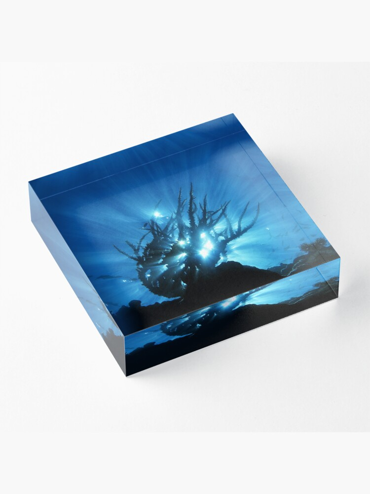 Alternate view of Purity of Form Acrylic Block