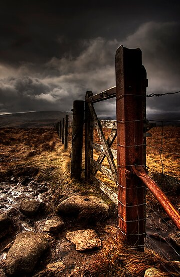 Gate by David Robinson