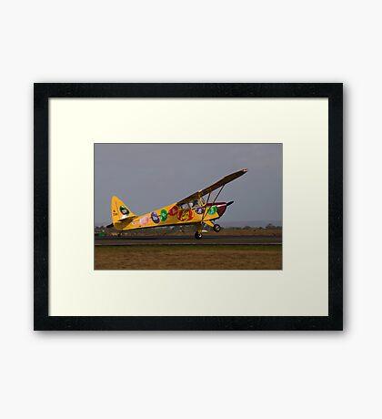 Fake Landing Framed Print