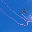 JellyBelly Aerobatics by Frank Yuwono