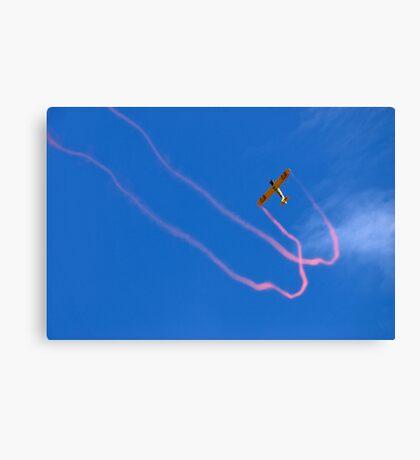 JellyBelly Aerobatics Canvas Print