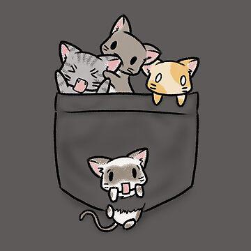 Gatitos de compañía de LiRoVi