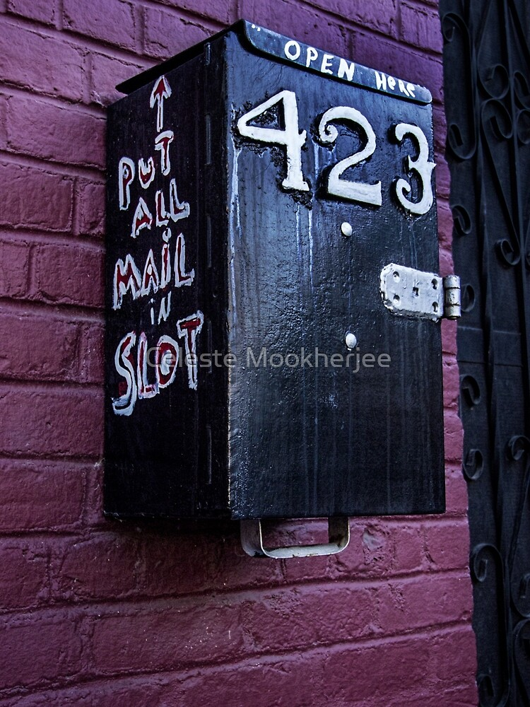 Message to a mail carrier by Celeste Mookherjee