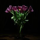 A Bunch of Tulips by Zern Liew
