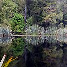 Lake Matheson Reflections by Will Hore-Lacy