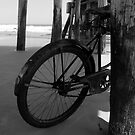 Bicycle under the pier by David Lee Thompson