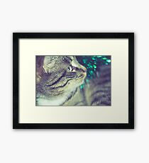 Retro Tabby Cat and Green Tinsel 3 Framed Print