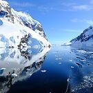 Antarctica by Karen Stackpole