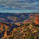 Desert Garden by K D Graves Photography