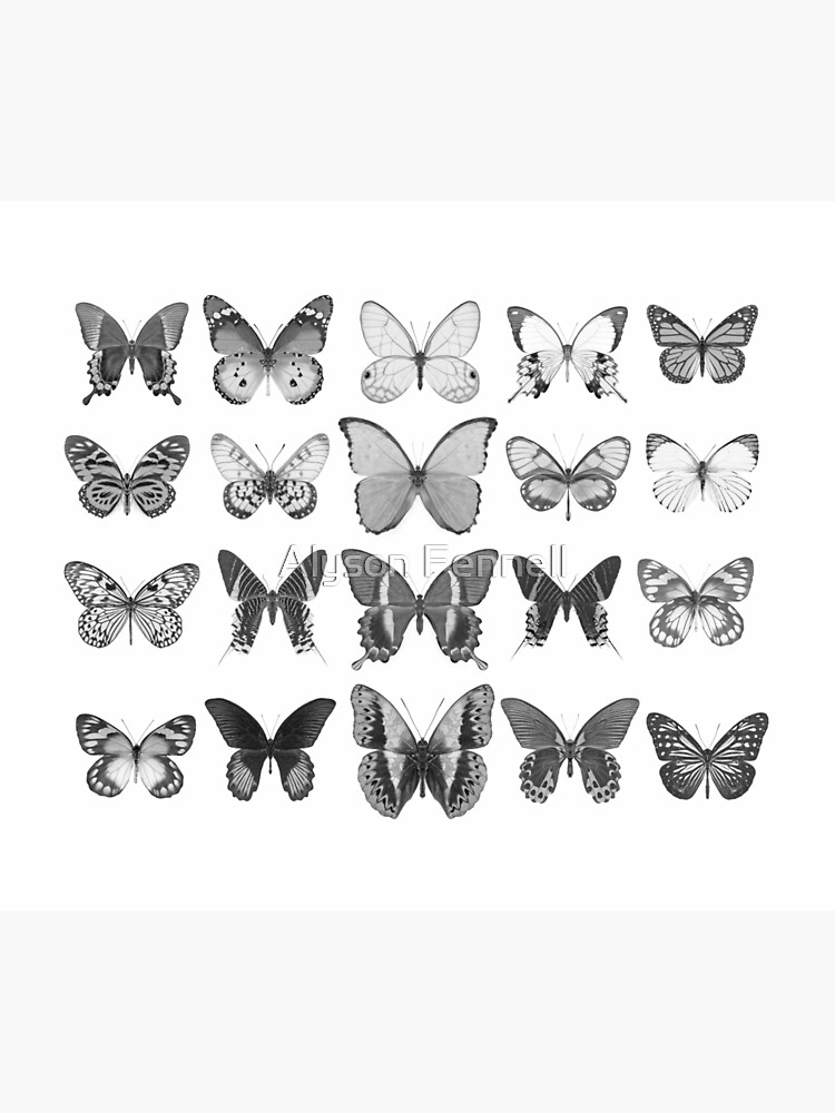 Mono Butterfly Collection by AlysonFennell