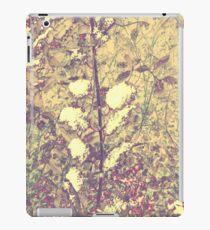 Snow on hollly leaves (yellow) iPad Case/Skin