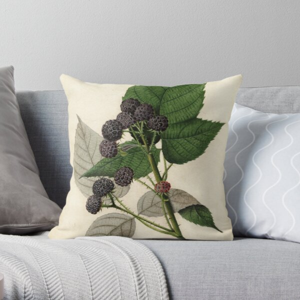 Vintage Painting of Blackberries Throw Pillow