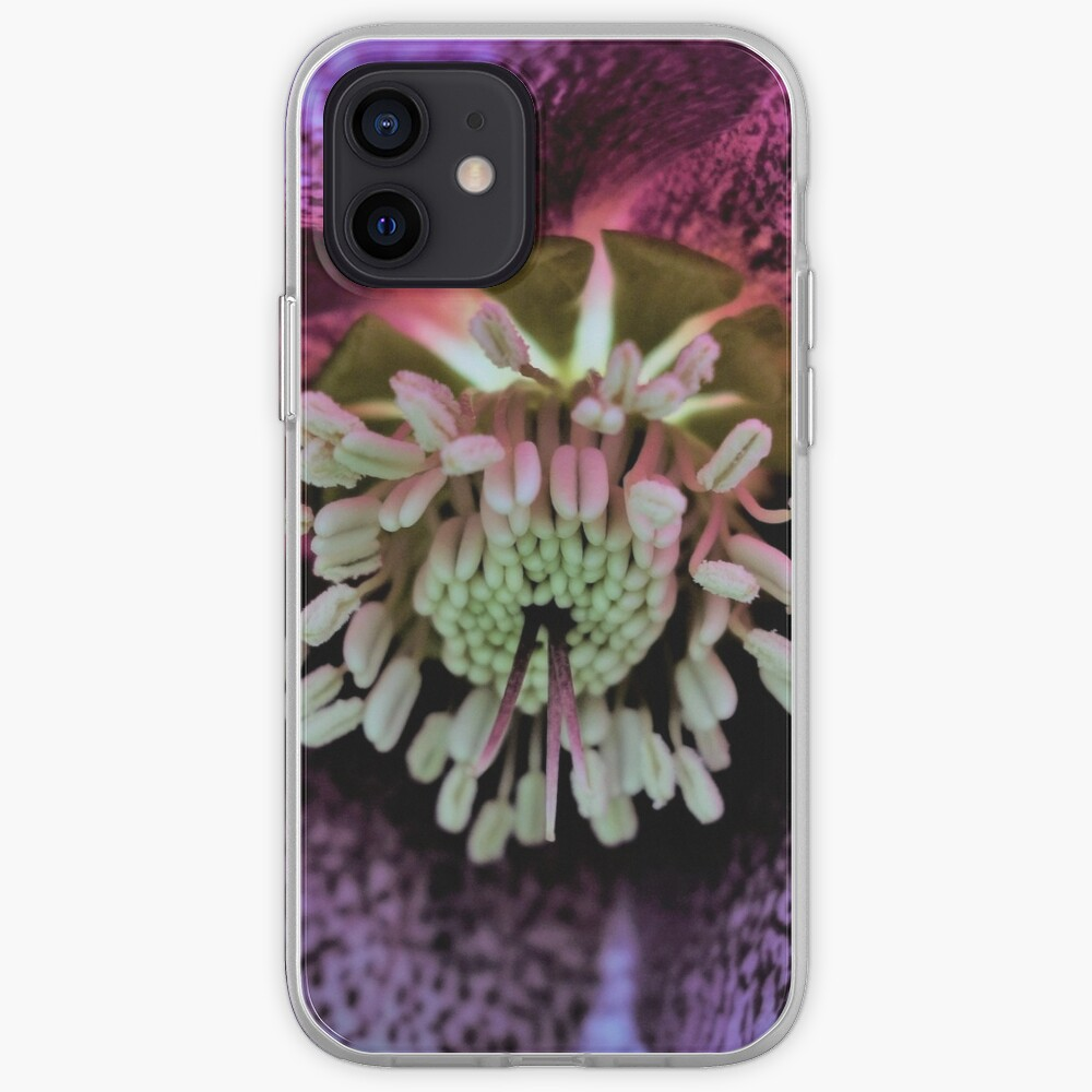 Purple Hellebore iPhone Case & Cover