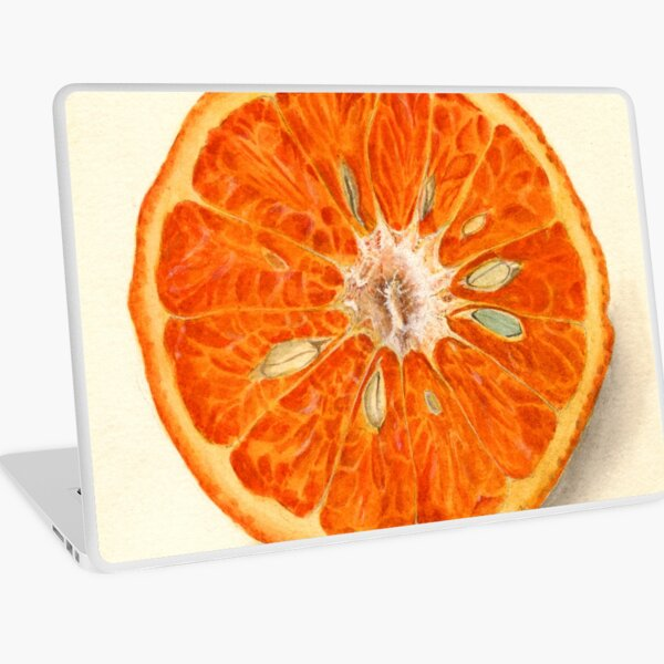 Vintage Painting of Tangerines  Laptop Skin