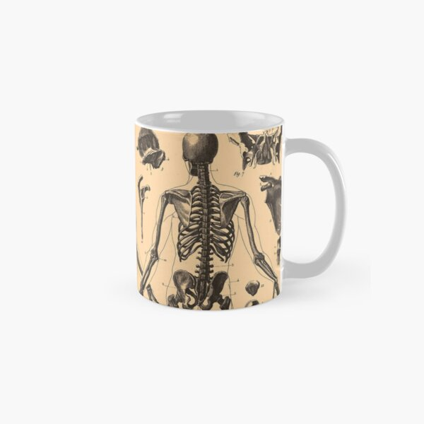 VINTAGE RETRO STYLE HUMAN SKELETON ANATOMY COFFEE MUG CUP NEW IN BOX