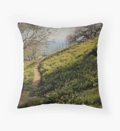 Path Through Yellow Daisies Throw Pillow