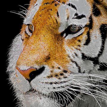 Neon Tiger by ShaneReid2