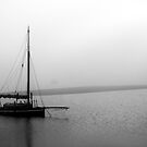 Rogerstown Harbour  by Nadia Power