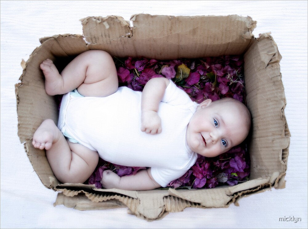 Babe in a box / Smiley Reilly by micklyn